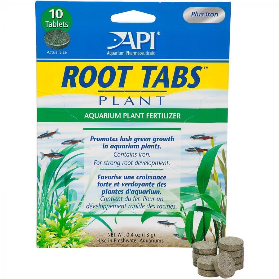 API Root Tabs.