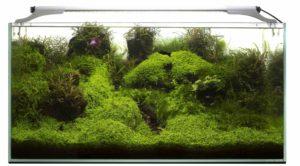 Aquael LEDDY SLIM PLANT 5W