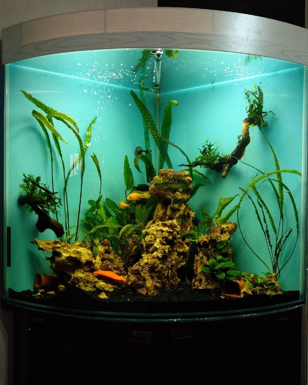 купить герметик для аквариума